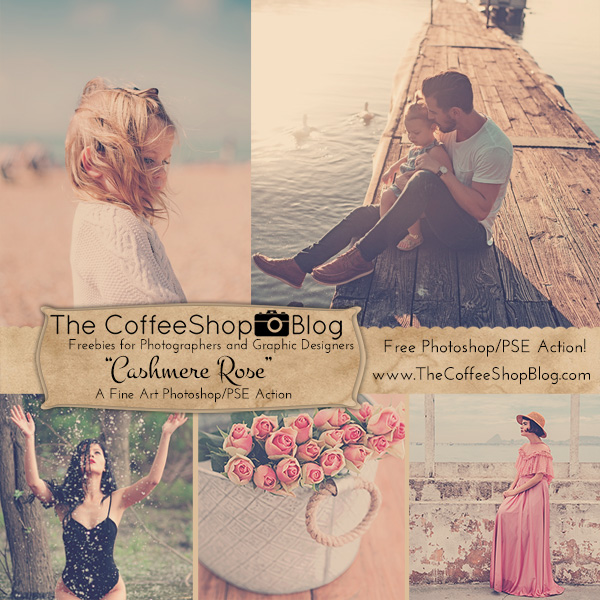 coffeeshop-cashmere-rose-ad-2