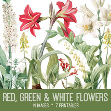 Red, Green and White Flowers Image Kit! Graphics Fairy Premium Membership