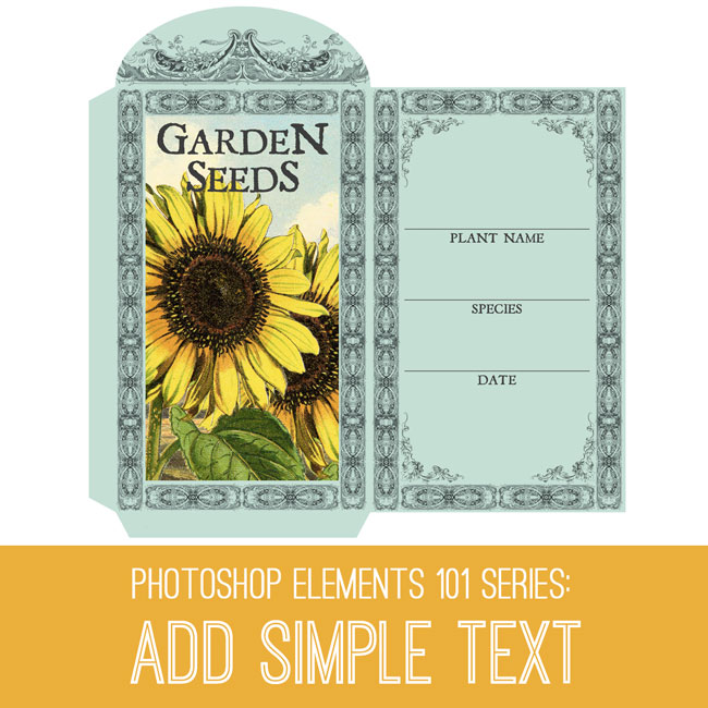 tutorial-650x650_add_text_graphicsfairy