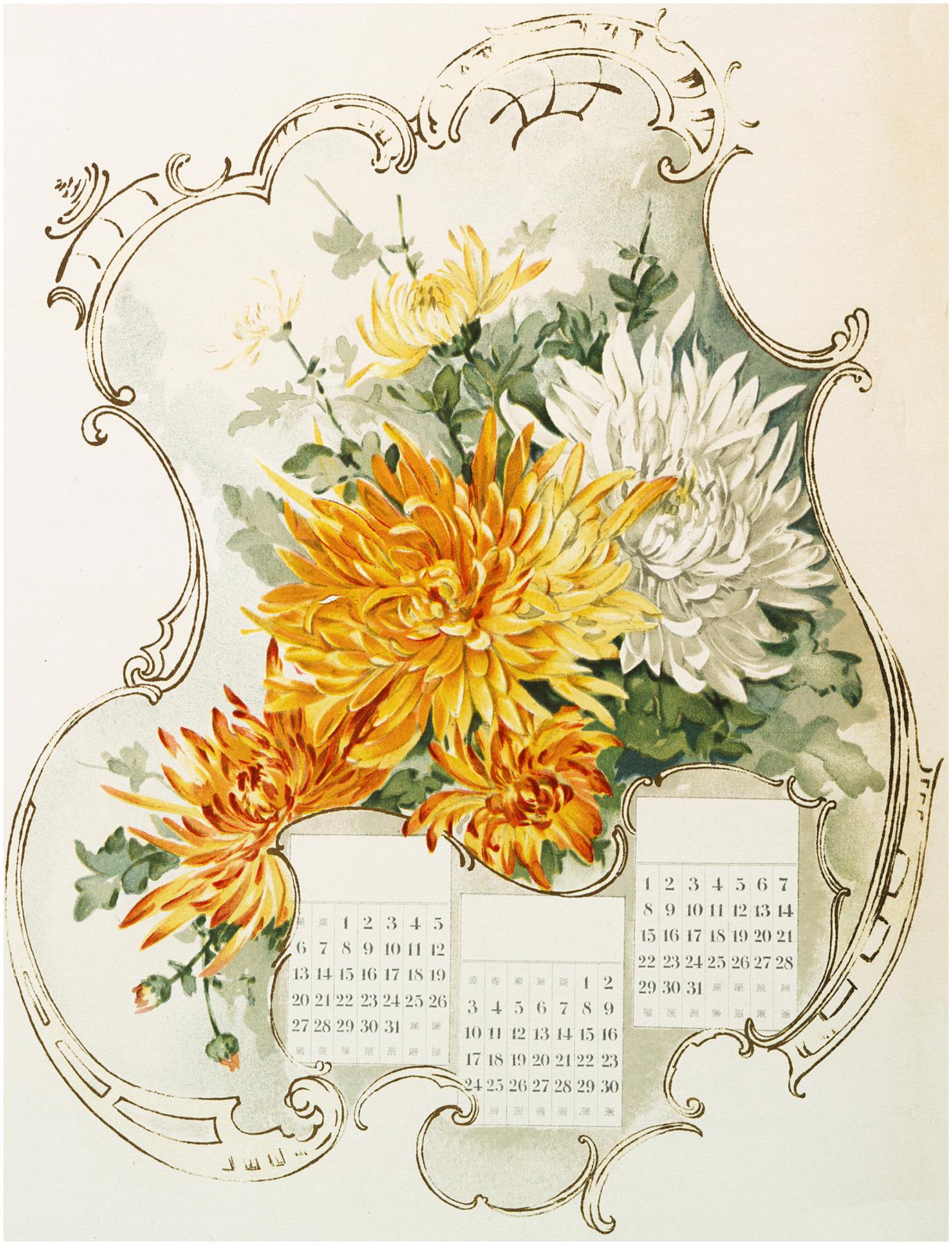 Floral Mums Calendar Image
