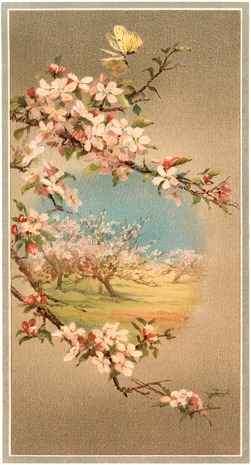 Free Flowering Branches Clip Art
