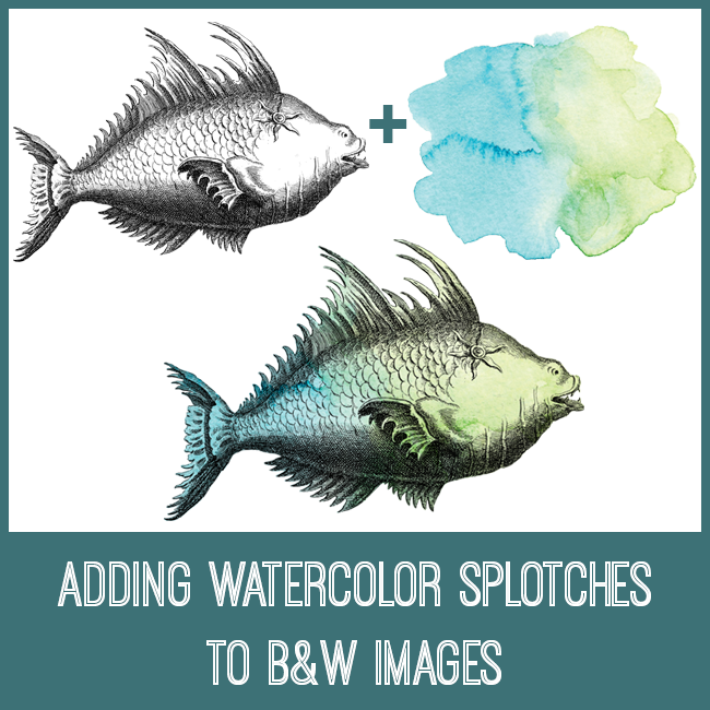 Adding watercolor splotches to black and white images
