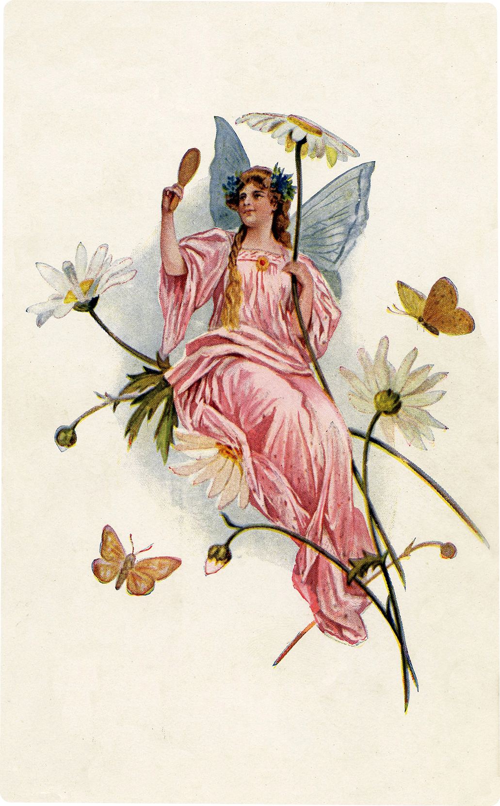 Pink Fairy Picture