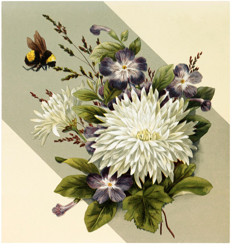 Vintage Floral Bumblebee Image