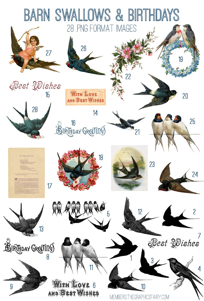 Barn Swallows and Birthdays Image Kit