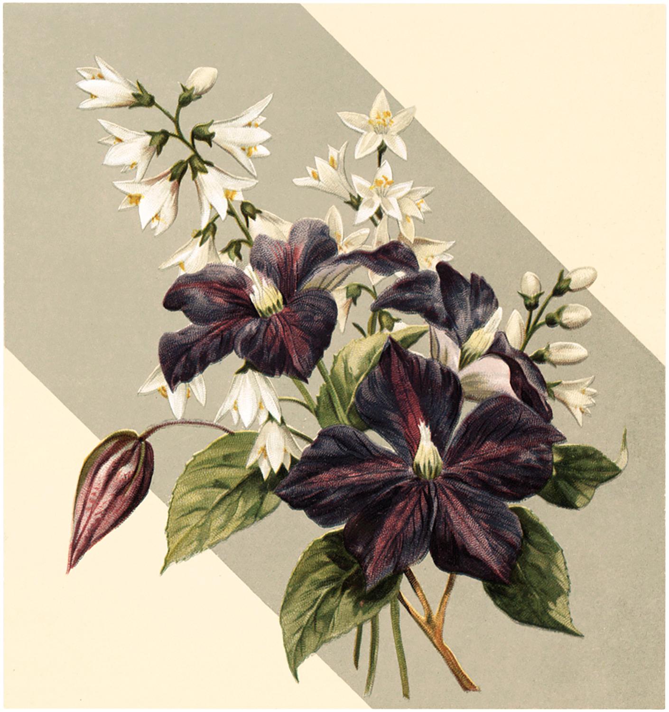Purple Floral Bouquet Download