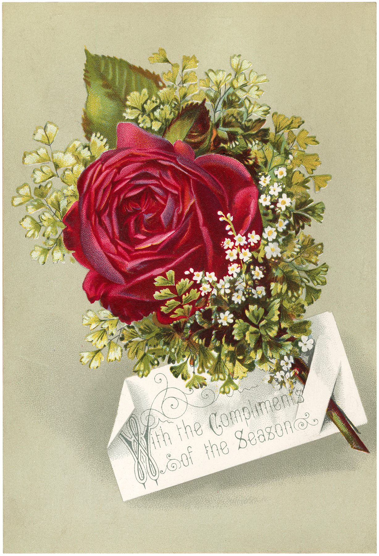 Victorian Red Rose Image