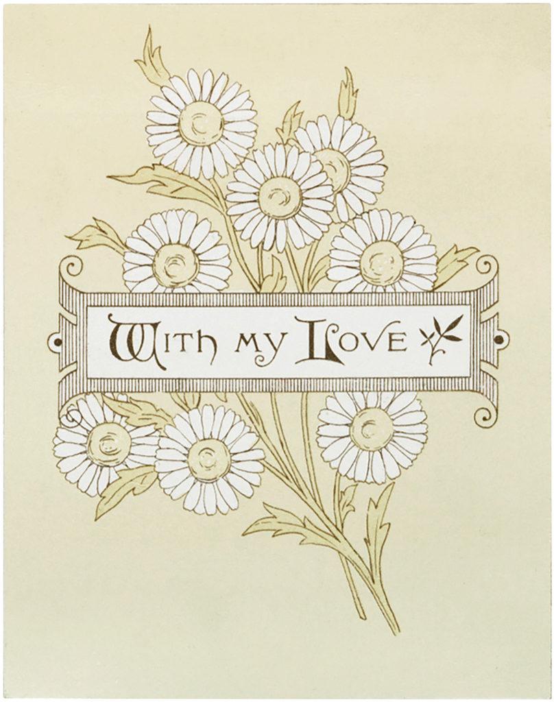 Cute Daisy Illustration
