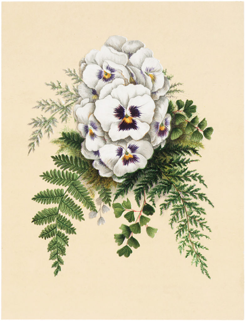 Vintage Pansy Easter Image