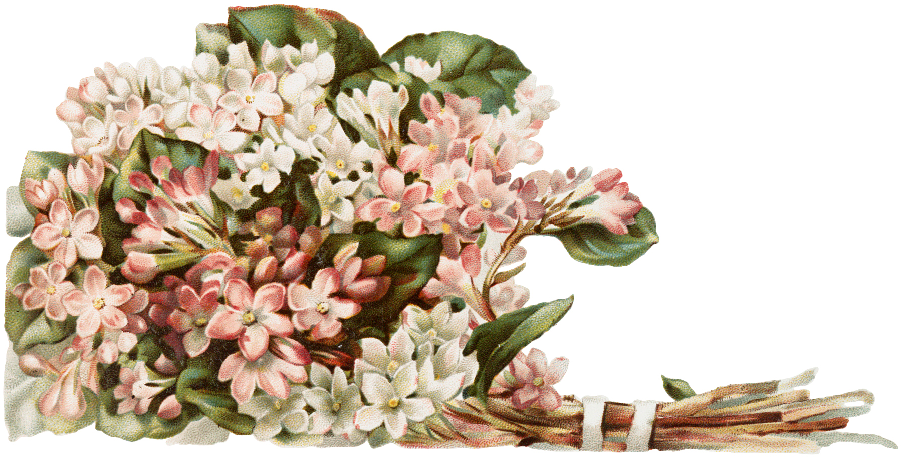 Vintage Pink Bouquet Image