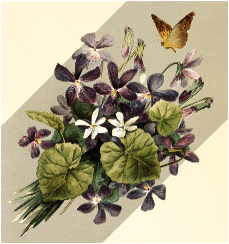Vintage Violet Bouquet Image