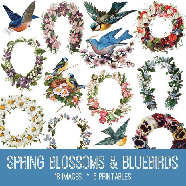 Spring Blossoms and Bluebirds