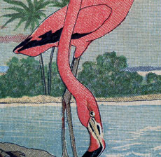 Free Flamingo Image Download!