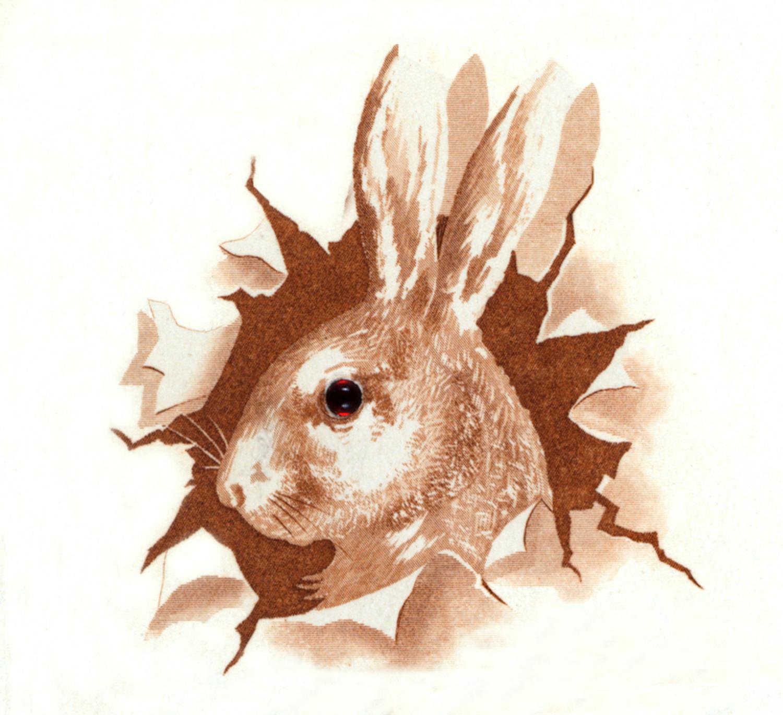 Vintage Bunny Image