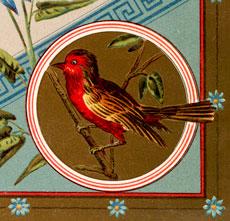 Vintage Red Bird Birthday Image
