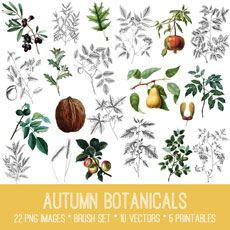 Autumn Botanical Images Kit! Graphics Fairy Premium Membership