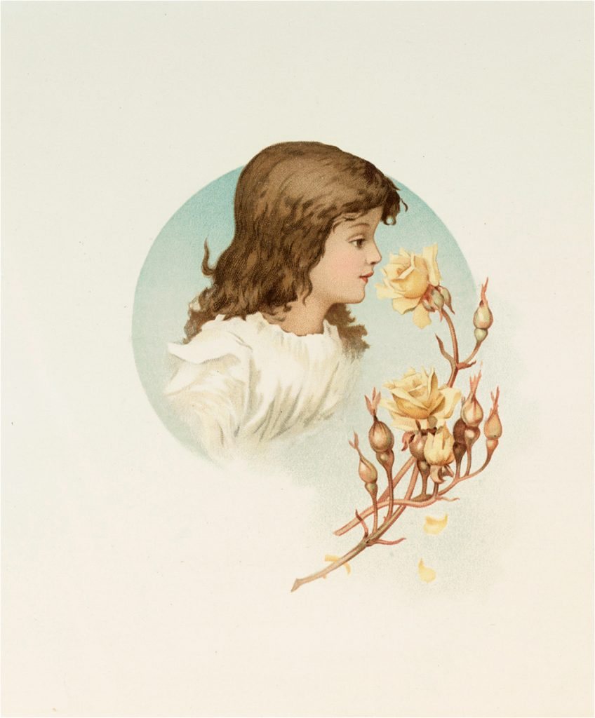 Old Pastel Roses and Girl Graphic