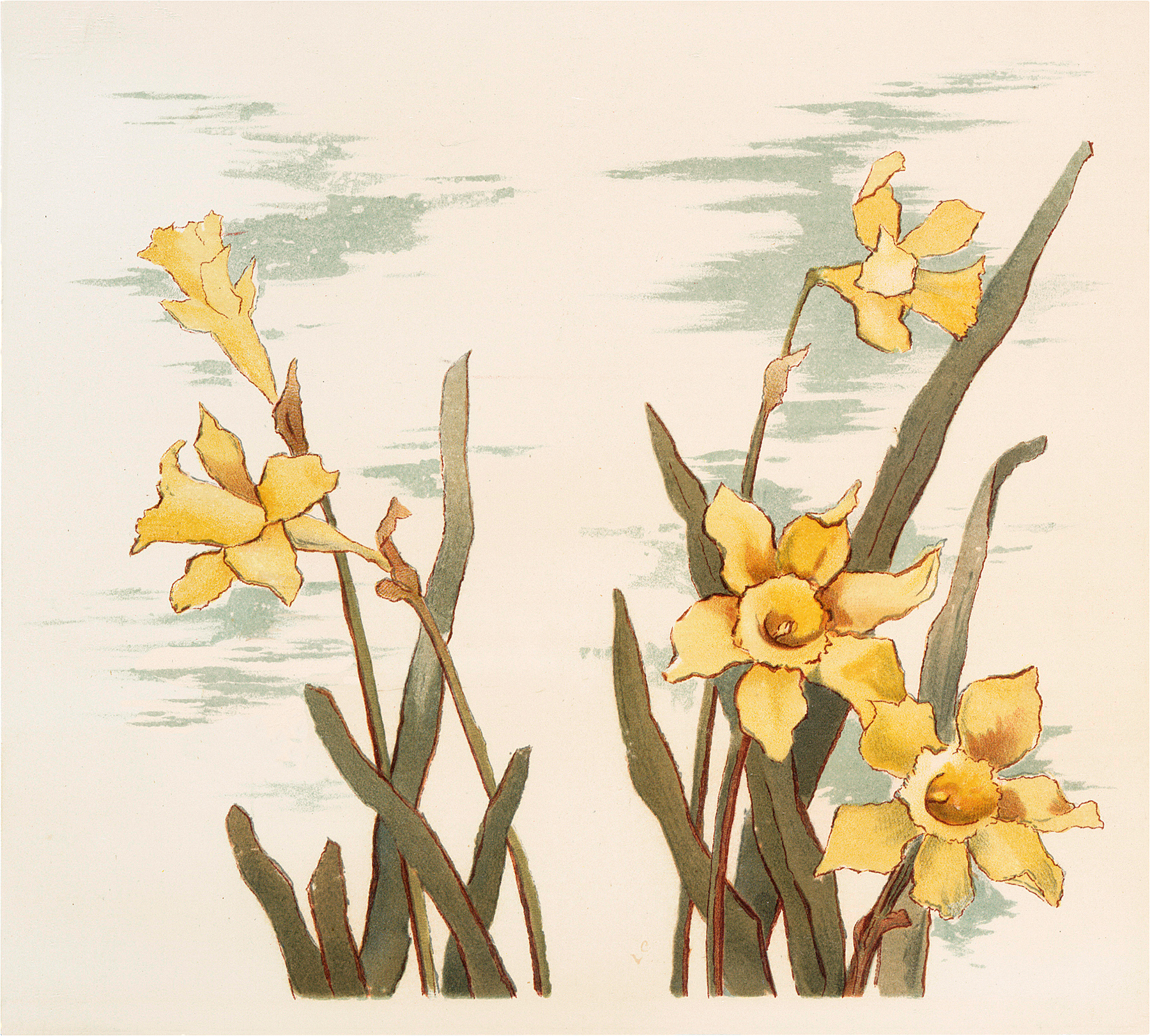 Vintage Yellow Daffodils Graphic