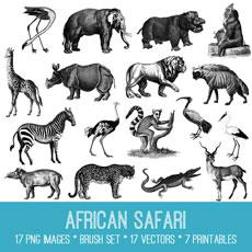 African Safari Image Kit! Graphics Fairy Premium Membership