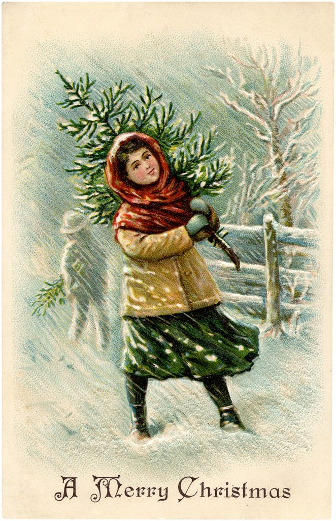 Girl with Christmas Tree in Snow Image