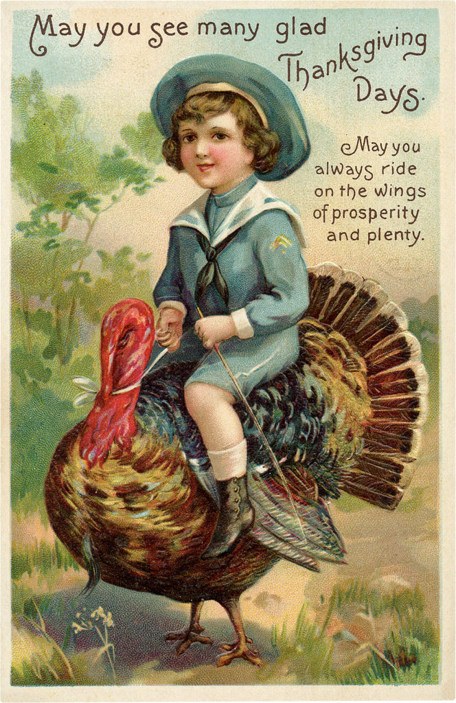 Sailor Boy Rides Turkey Picture Funny
