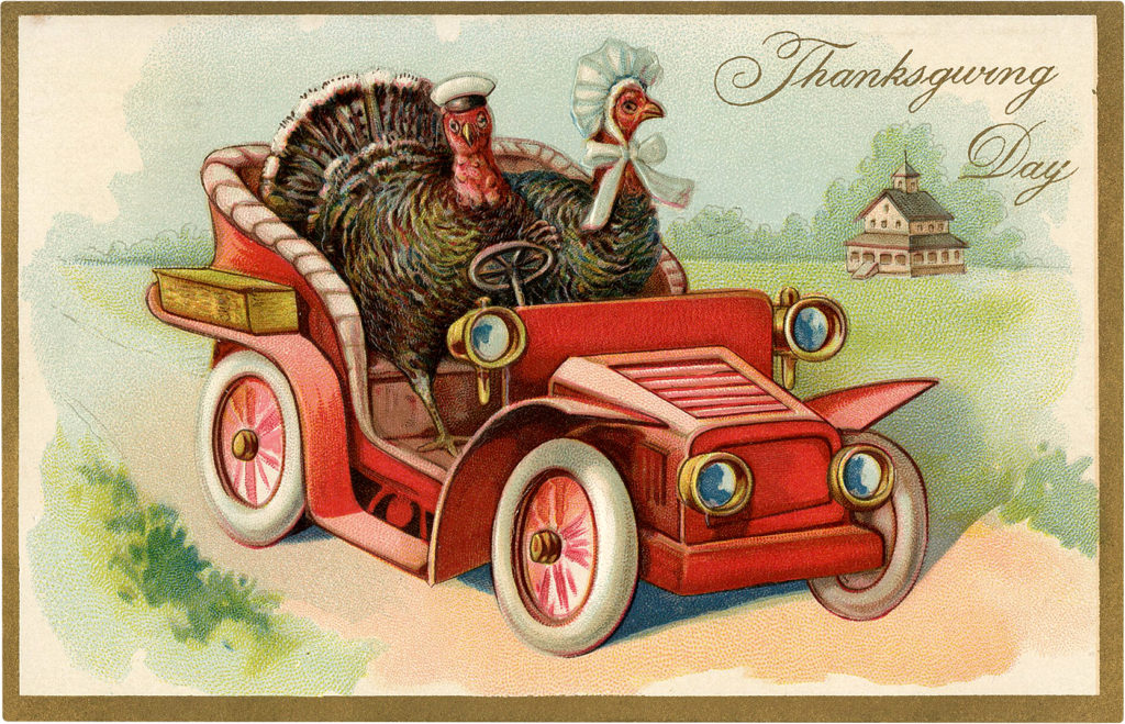 Funny Thanksgiving Turkeys Drive Car Picture