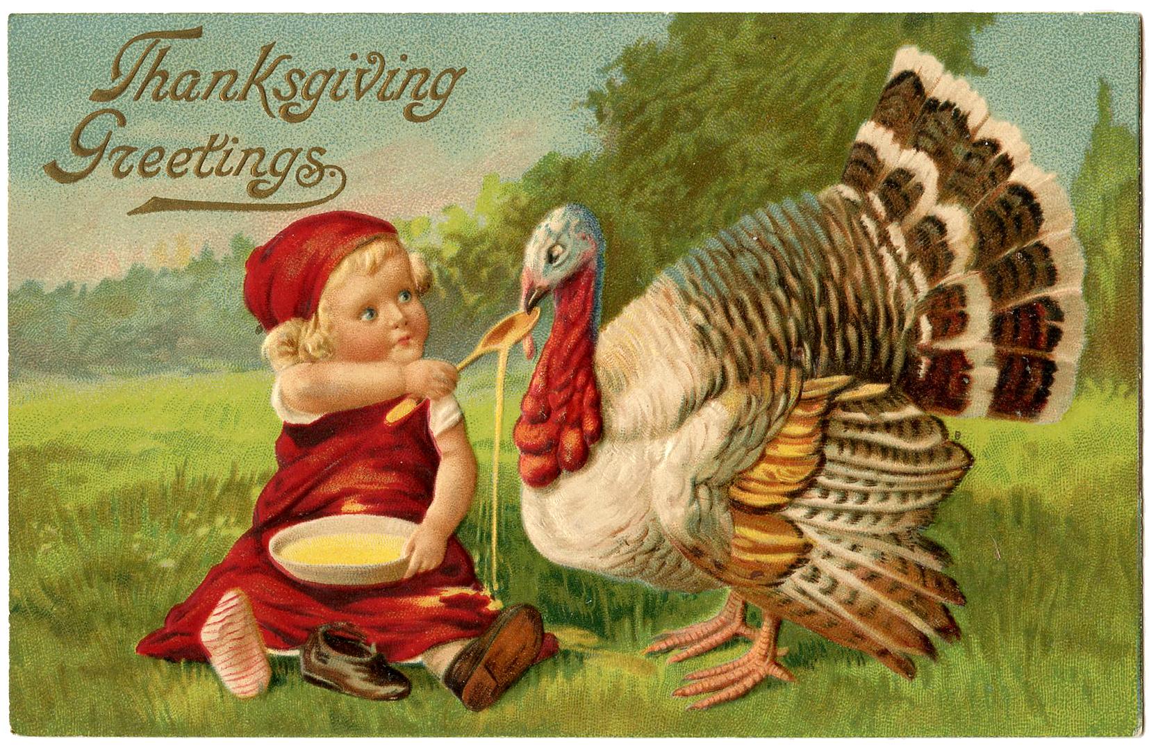 Child feeding a Turkey on Thanksgiving