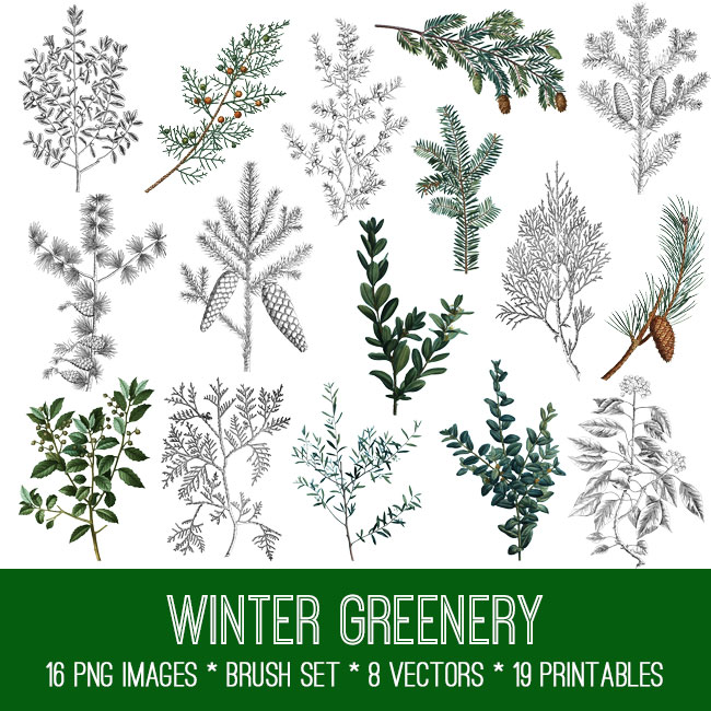 Winter Greenery Bundle