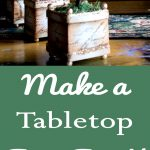 Make a Tabletop Fairy Forest