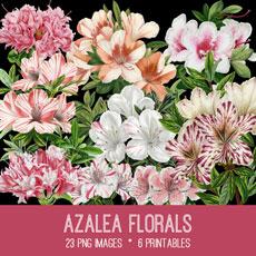 Azalea Florals Images Kit! Graphics Fairy Premium Membership