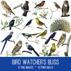 Bird Watcher's Bliss Images Kit! Graphics Fairy Premium Membership