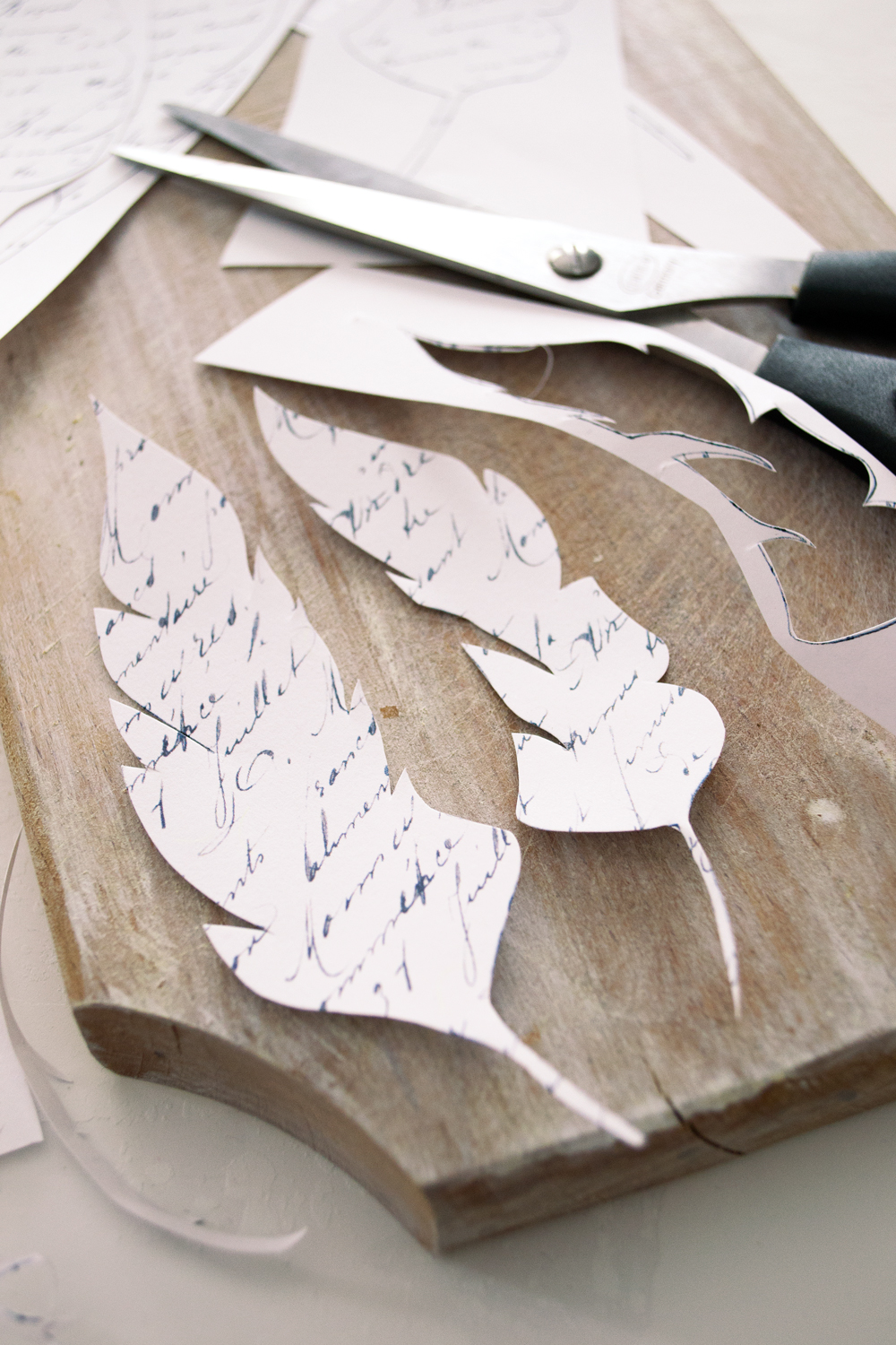 DIY French Script Paper Feathers Project + free printable