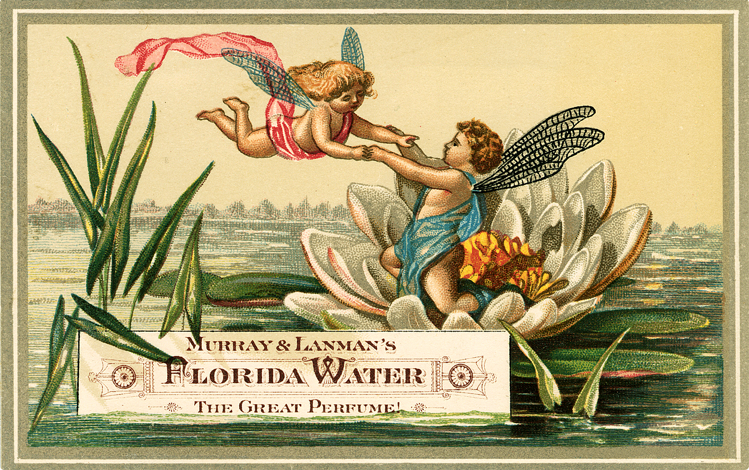 Vintage Fairies Frolic on a Lily Pad Label!