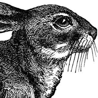 Cute Vintage Black and White Rabbit Clip Art!