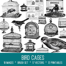 Bird Cages Image Kit! Graphics Fairy Premium Membership