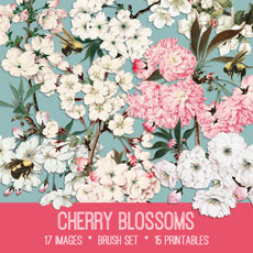 Cherry Blossoms Images Kit! Graphics Fairy Premium Membership