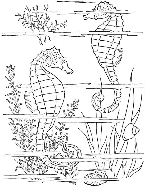 Adult Coloring Page Seahorses