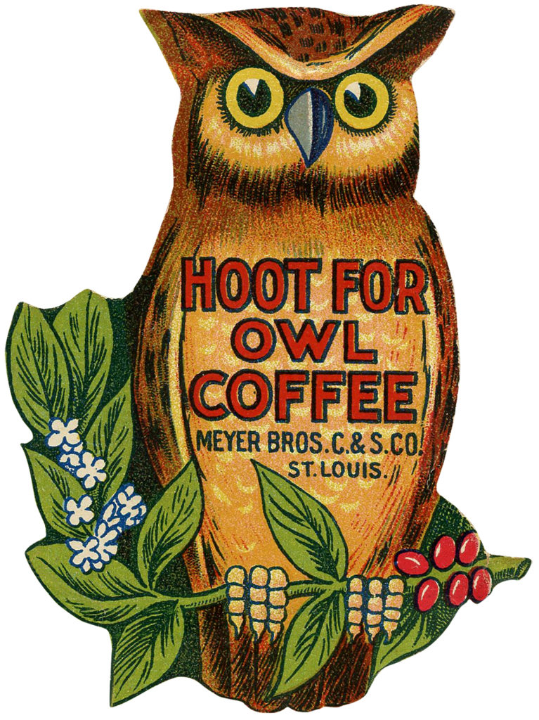 Cutest Vintage Owl Images