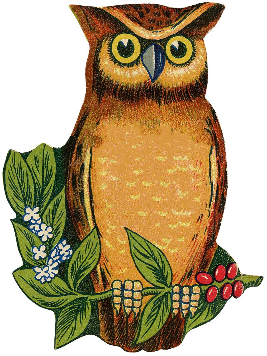 3 Cutest Vintage Owl Images! - The Graphics Fairy