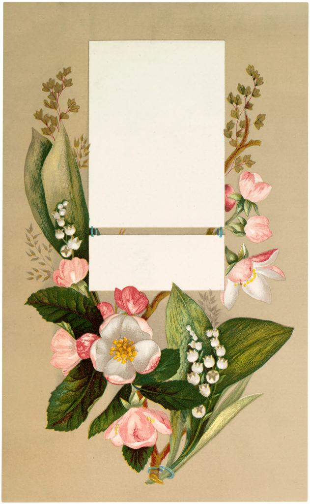 Beautiful Vintage Pink Floral Label Image!