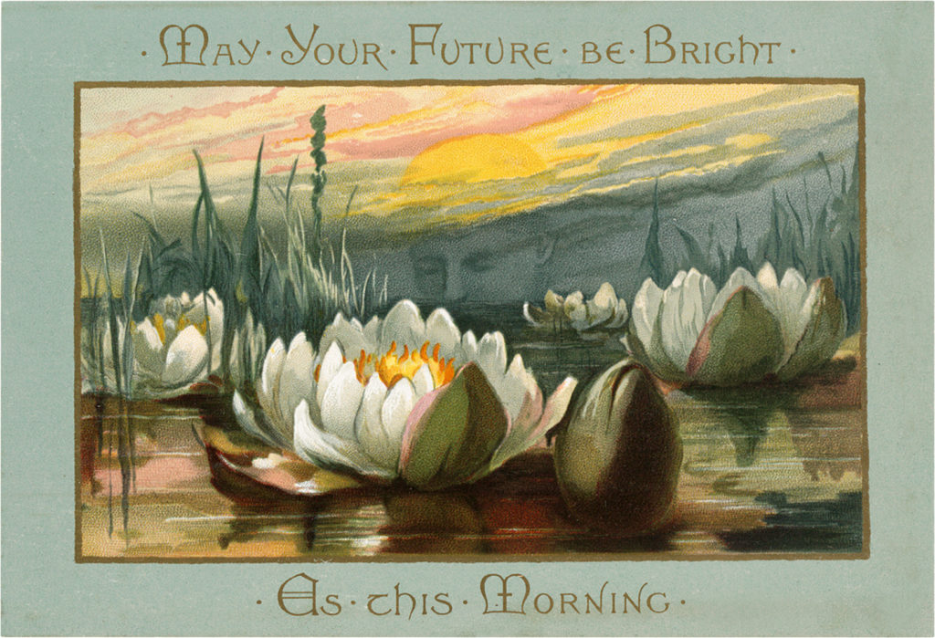 Printable Floral Card WaterLilies