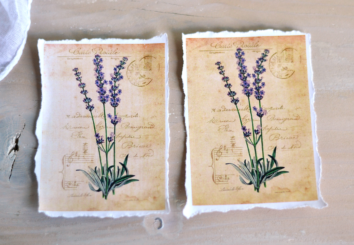 Hydrangea and Lavender vintage tags + free printable