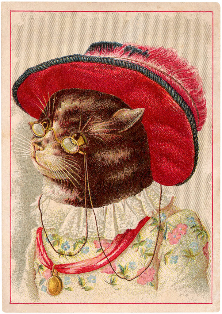 Charming Vintage Cat in Feathered Hat Trade Card Graphic!