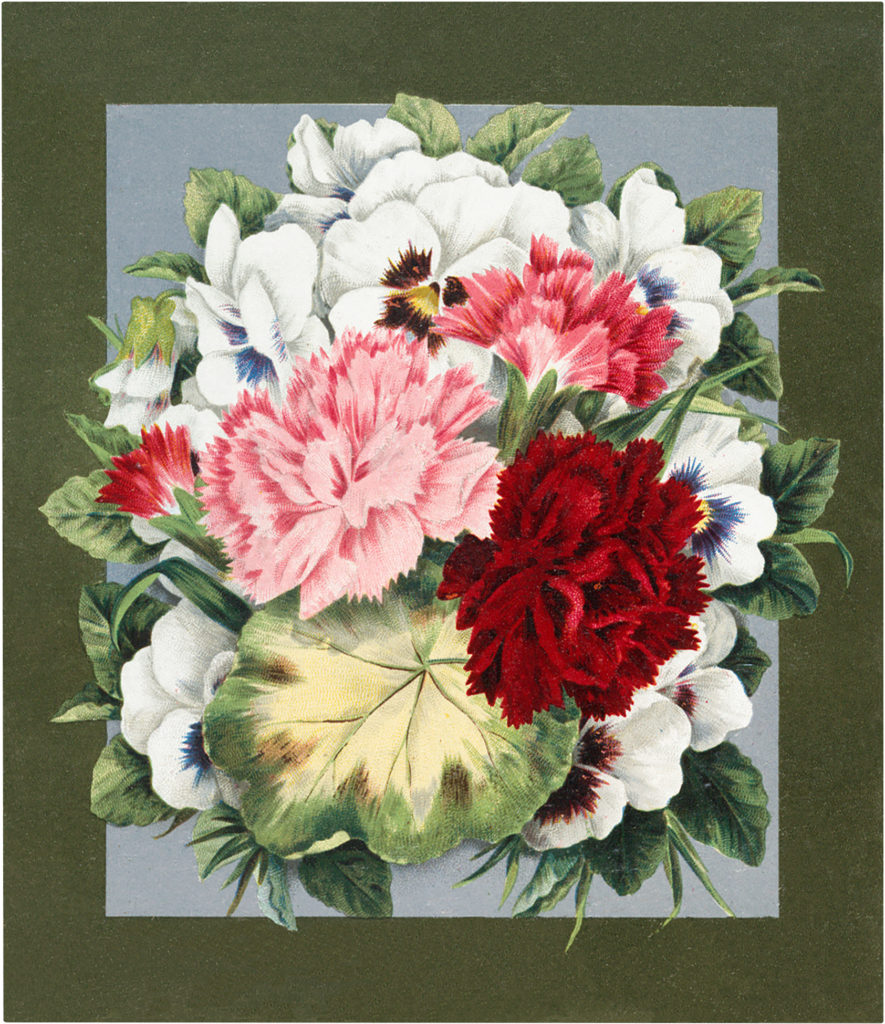 Gorgeous Vintage Pansies and Carnations Image!