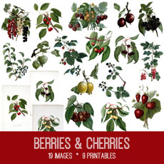Berries & Cherries Image Kit! Graphics Fairy Premium Membership