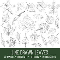 Line Drawn Leaves Images Kit! Graphics Fairy Premium Membership