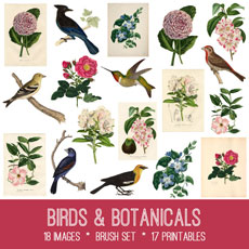 Birds & Botanicals Image Kit! Graphics Fairy Premium Membership