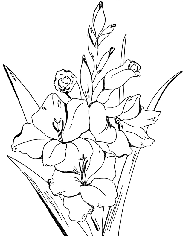 Adult Flowers Coloring Page