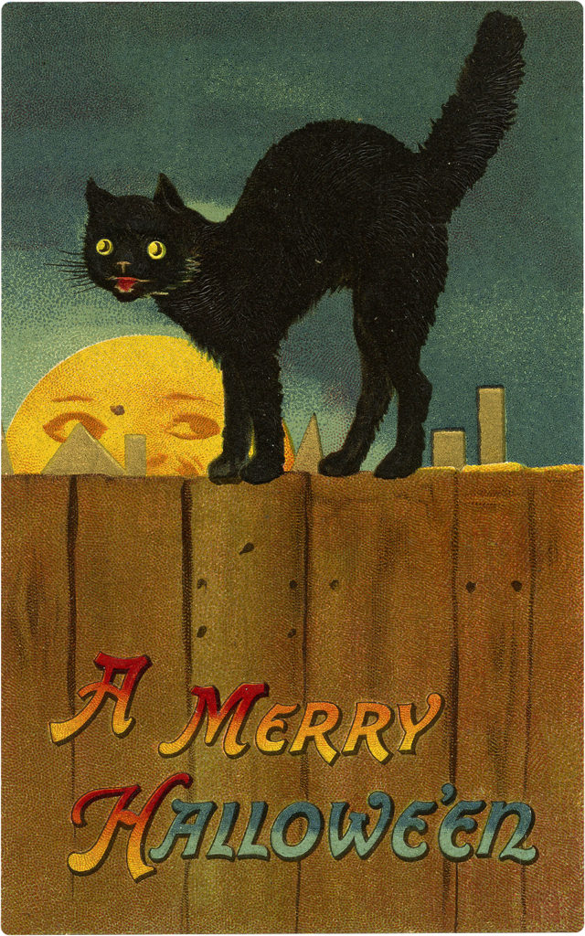 Retro Scary Black Cat on Fence Halloween Image!