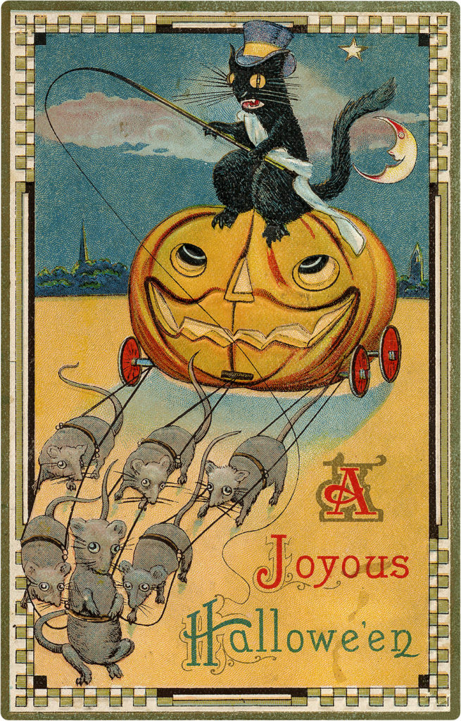 Halloween Image Cat Driving Pumpkin Coach
